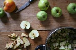apple crumble cake 07